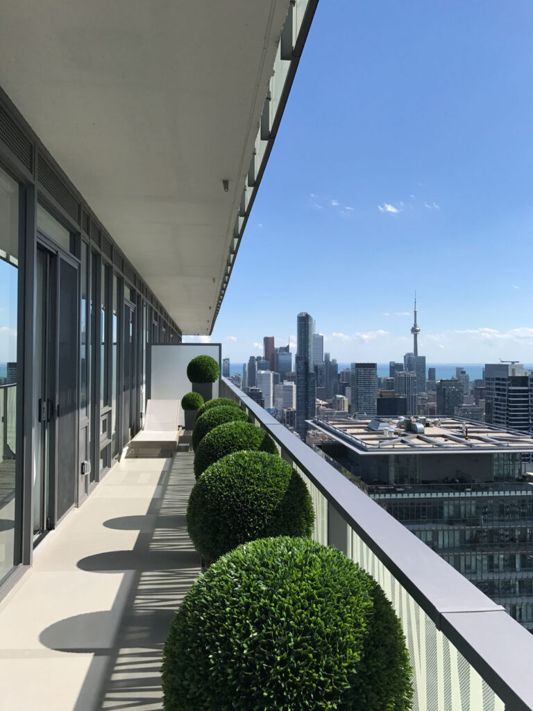 Balcony with shrubs with view of downtown Toronto.