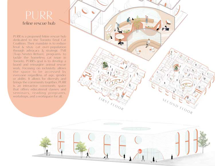 Drawings and detail of a personal branding package on a pet spa by Nancy Phan.