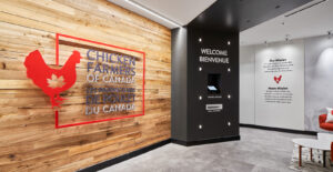 A rustic industrial palette stylizes the modern office without replicating a chicken coop