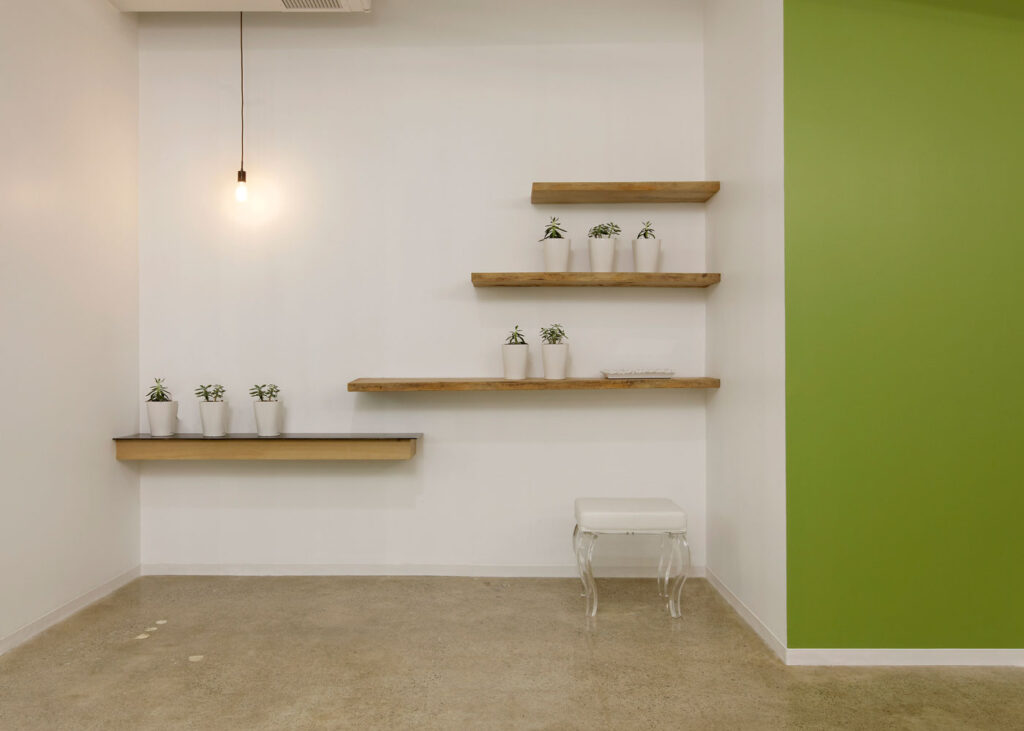 Open area at ecobee with plants and open floating shelves.