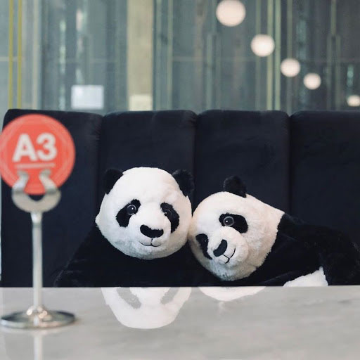 Two stuffed pandas sitting at a restaurant booth with a black velvet upholstery.
