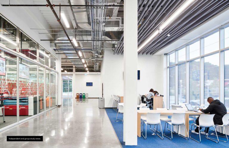 A blue carpet demarcates a study space along a series of windows.